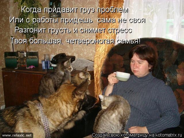 kotomatrix_001042