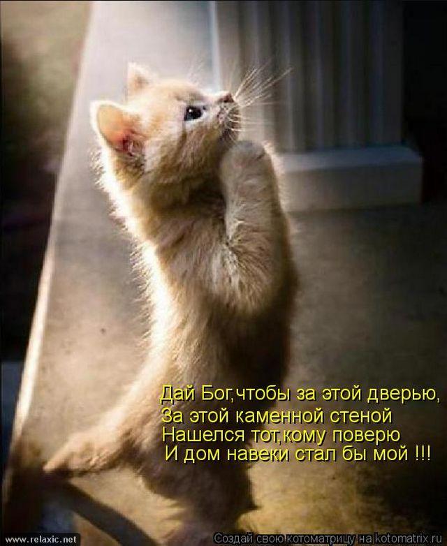 kotomatrix_001062