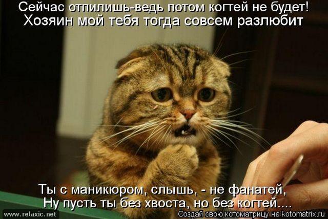 kotomatrix_001082