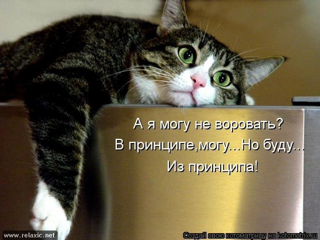 kotomatrix_001092