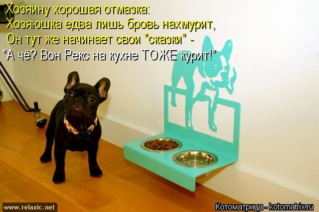 kotomatrix_001141