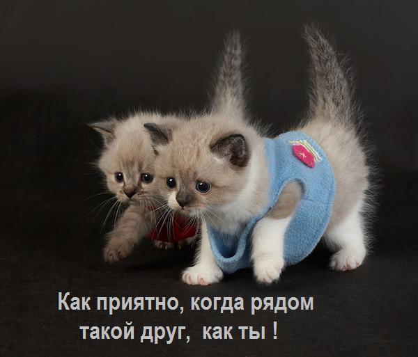 20121807223623
