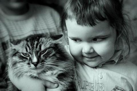 kids_n_cats_2