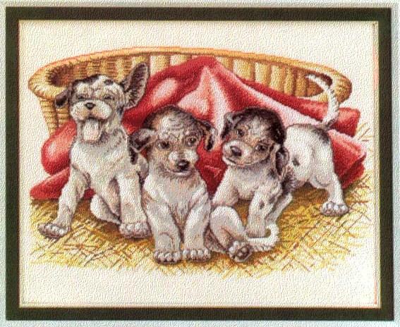 Puppies (Вышивка крестиком)