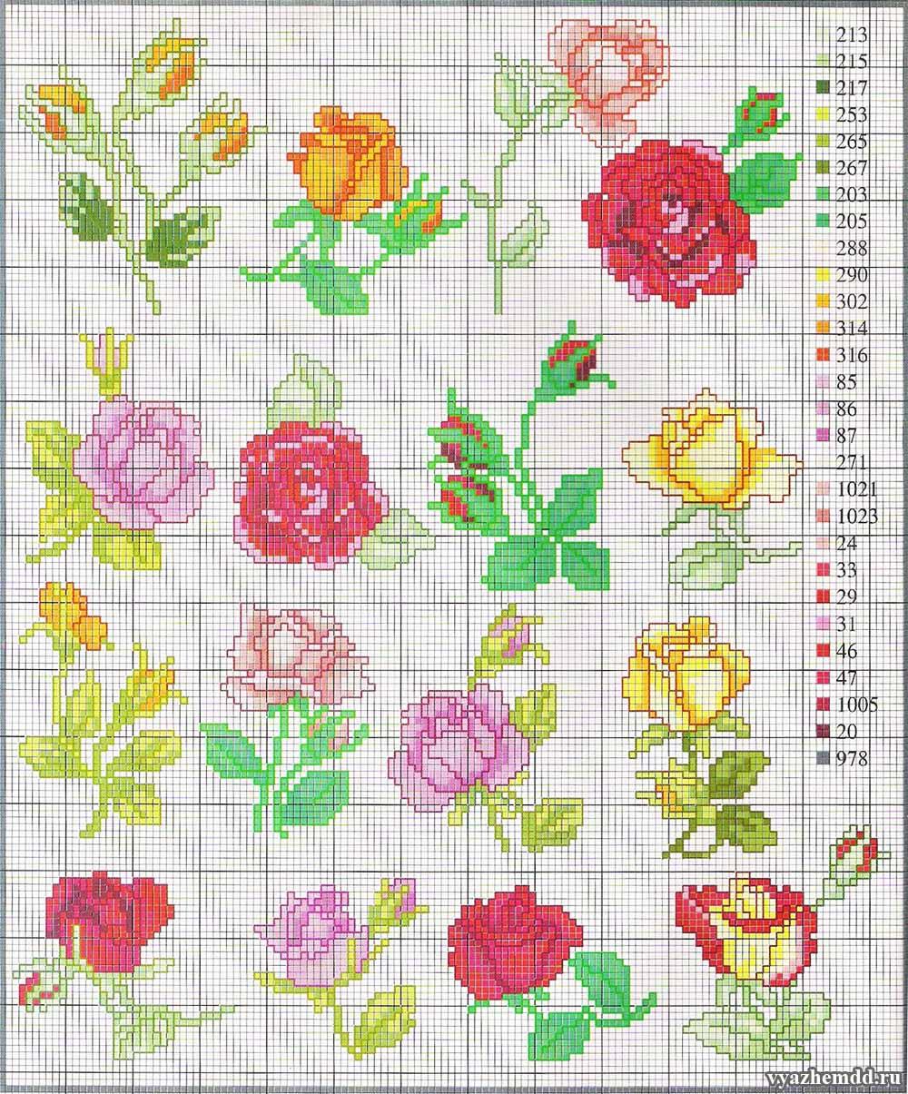 rozy-besplatnye-shemy-vyshivki