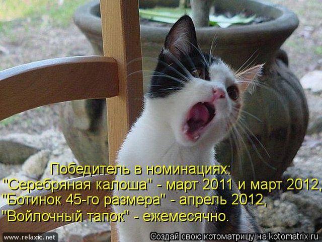 kotomatrix_000022