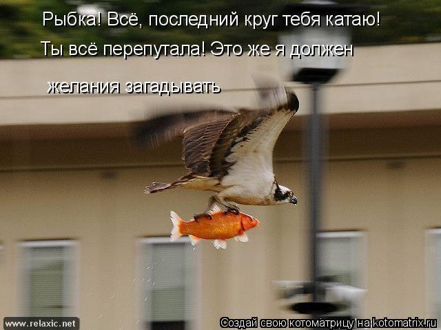 kotomatrix_000112
