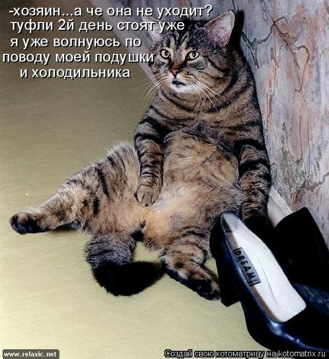 kotomatrix_000132
