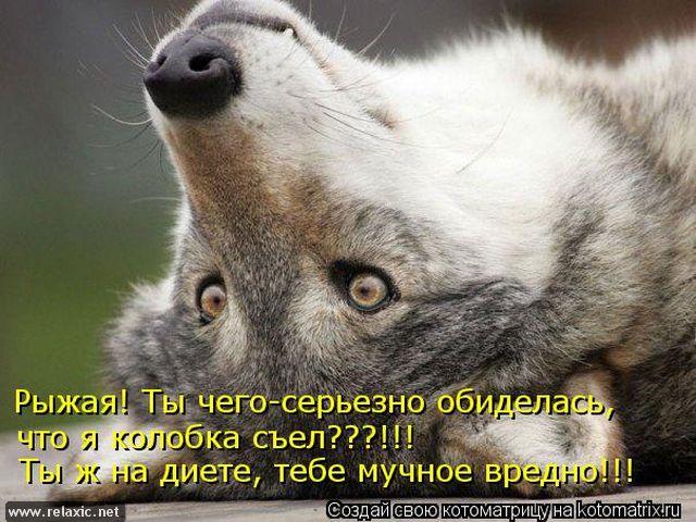kotomatrix_000312