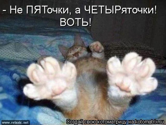 kotomatrix_000362
