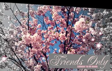 friendsonly2