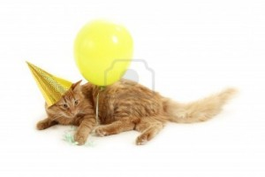 8662726-kitten-holiday-play-with-cap-green-balloon-isolated-on-white-background