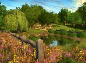 peacefulshire