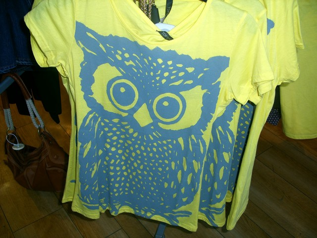 there are owls in the fashion shop