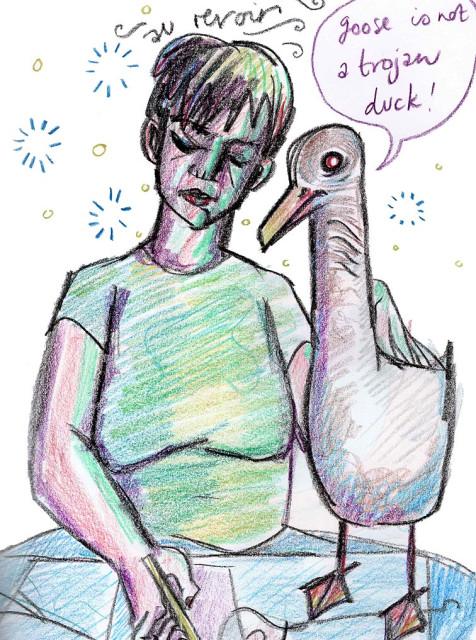 goose is not a trojan duck