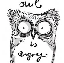 owl is angry - detail