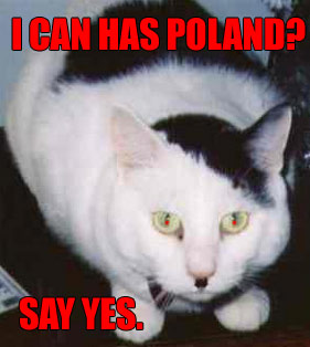 hitler cat wants leibensraum