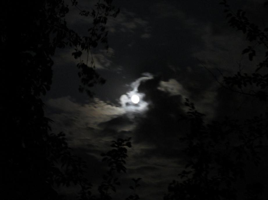 IMG_2012 облака