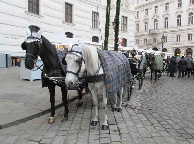 IMG_6872 — лошадки сжато