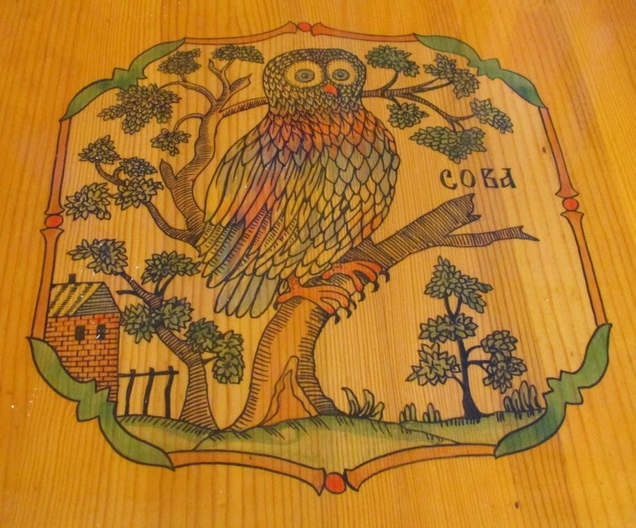 IMG_5154 — сова на столешнице