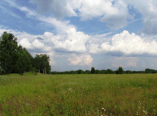 IMG_9122 облака в поле - копия