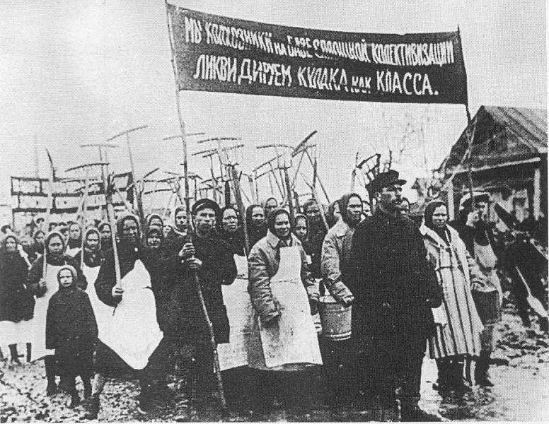 В лето 1929: Начало коллективизации.