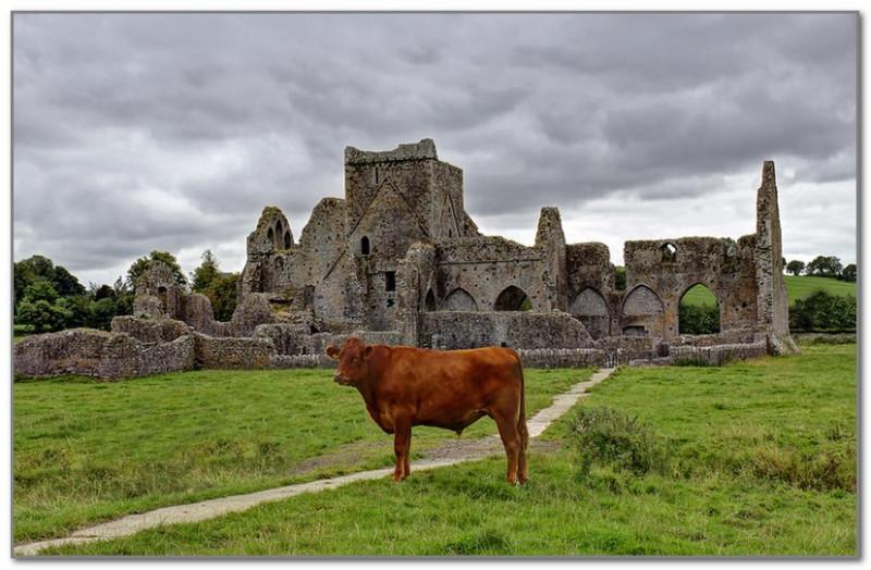 Самый ирландский пейзаж