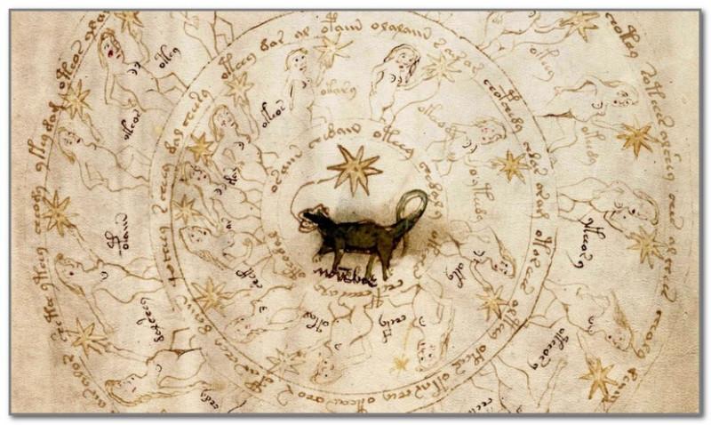 Одна из иллюстраций Манускрипта Войнича