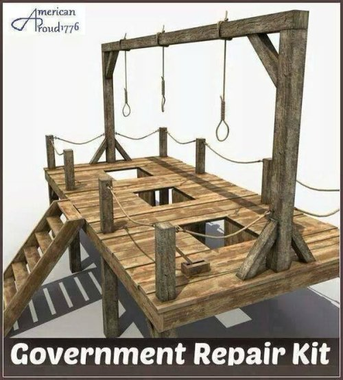 gov repair kit.jpg