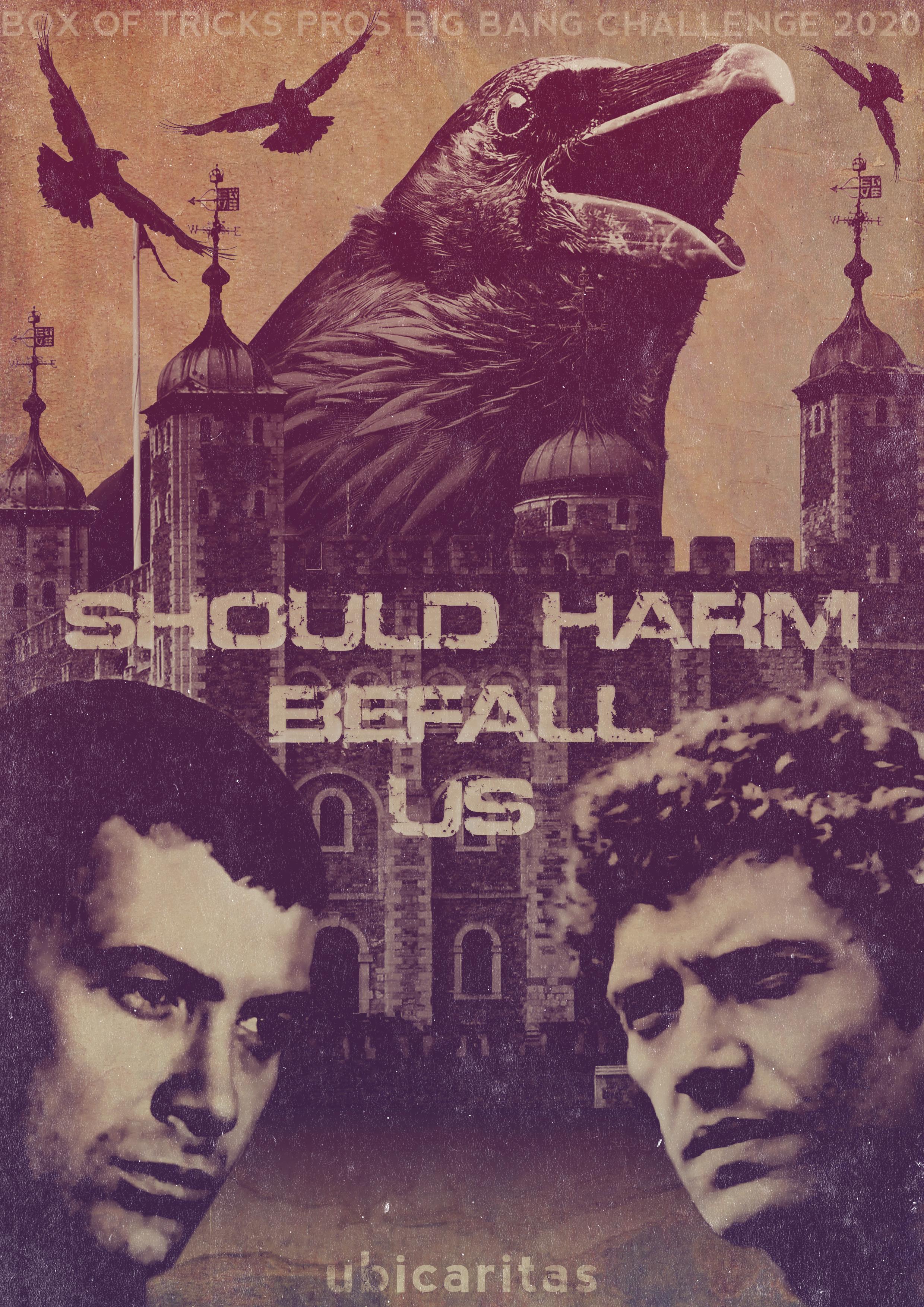 Ebook cover Should Harm Befall Us by ubicaritas