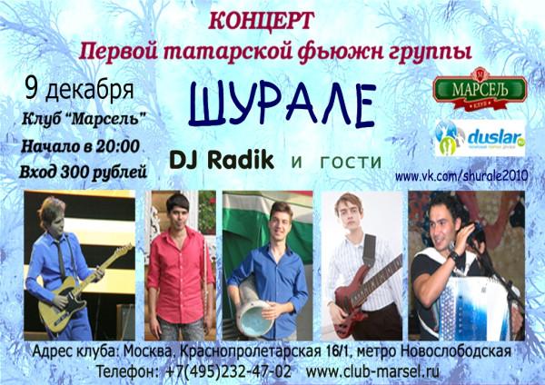 окончательный вариант 13 11 2012