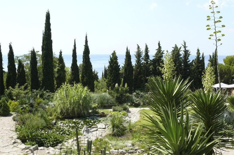 клуб знакомств ботанический сад