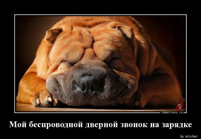 1569826349_demy-2.jpg