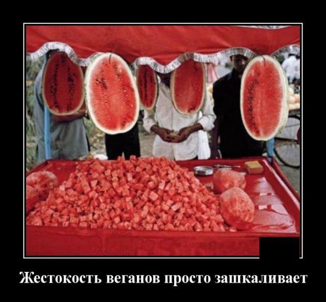 demotivatory_na_sredu_20_foto_6.jpg