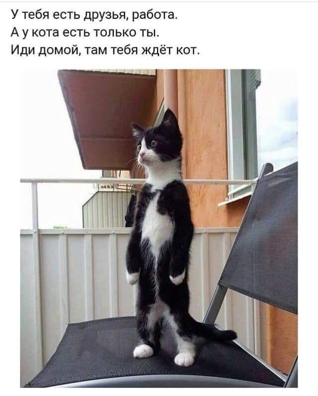 fotopodborka_chetverga_55_foto_6.jpg