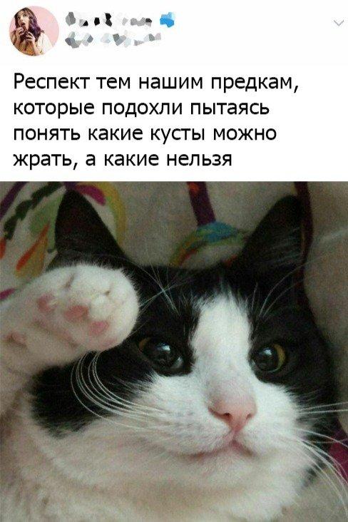 fotopodborka_chetverga_56_foto_30.jpg