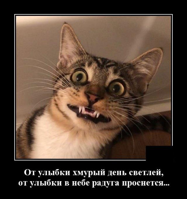 demotivatory_na_pjatnicu_20_foto_7.jpg