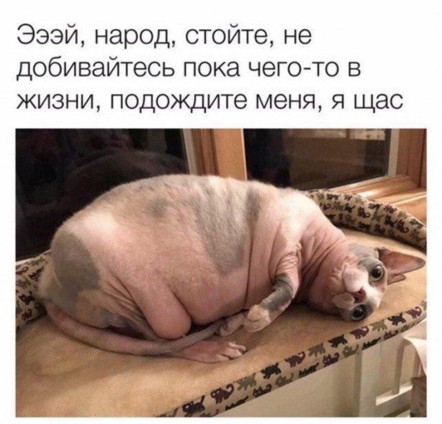 fotopodborka_chetverga_59_foto_2.jpg