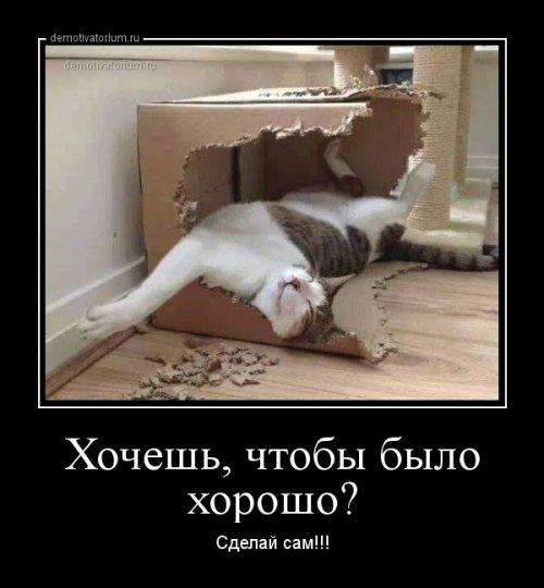 1554793901_demotivatory-11.jpg