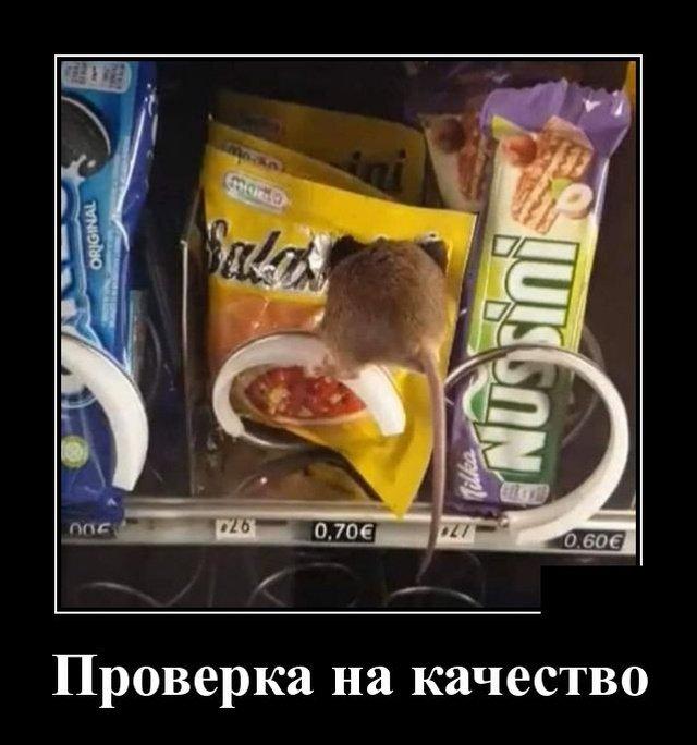 demotivatory_na_pjatnicu_20_foto_18.jpg