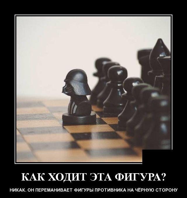 demotivatory_na_ponedelnik_20_foto_13.jpg