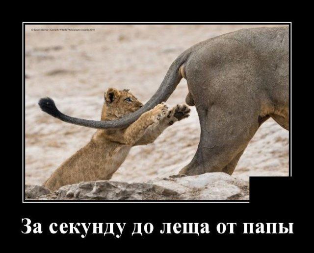 demotivatory_na_chetverg_20_foto_7.jpg