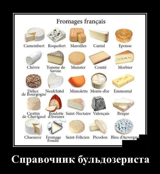 demotivatory_na_ponedelnik_20_foto_12.jpg