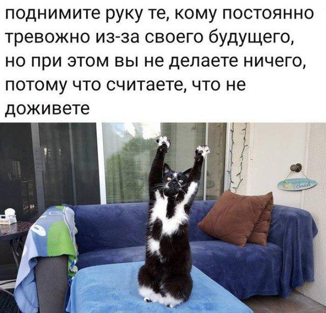 fotopodborka_vtornika_36_foto_4.jpg