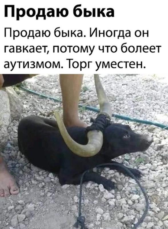fotopodborka_chetverga_60_foto_4.jpg