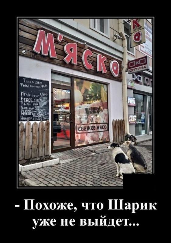 demotivatory_na_pjatnicu_20_foto_1iyh.jpg