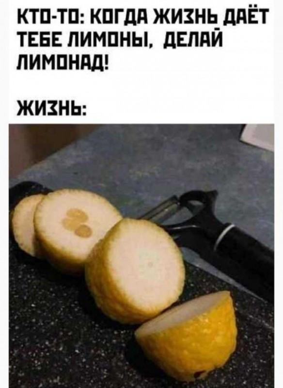 fotopodborka_sredy_55_foto_2.jpg