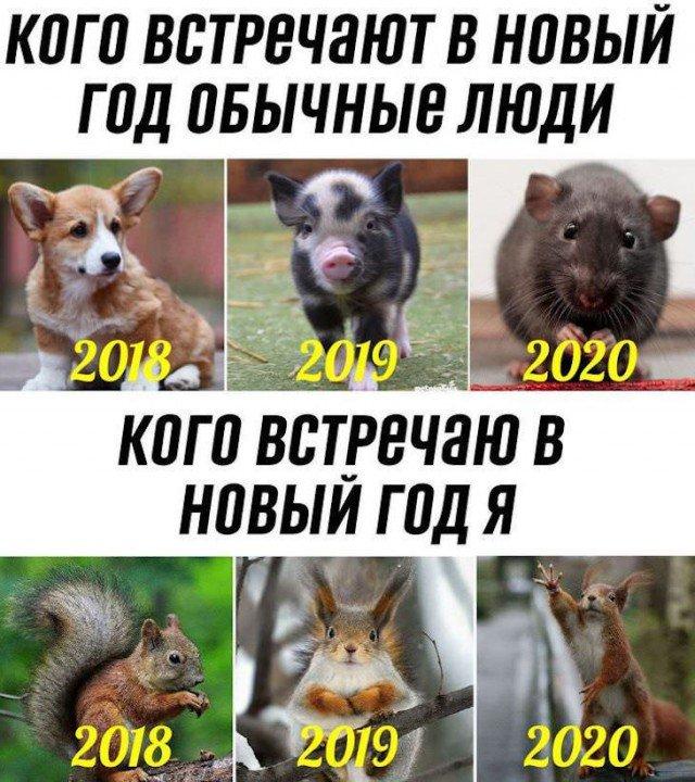 prednovogodnjaja_fotopodborka_28_foto_1.jpg