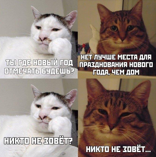 prednovogodnjaja_fotopodborka_28_foto_28.jpg