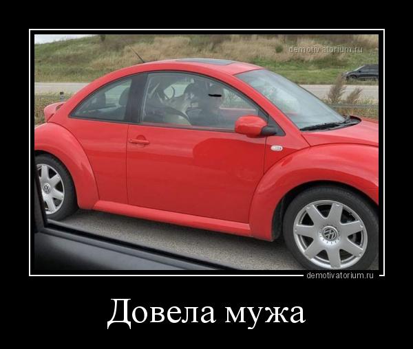 dovela_muja_181477.jpg
